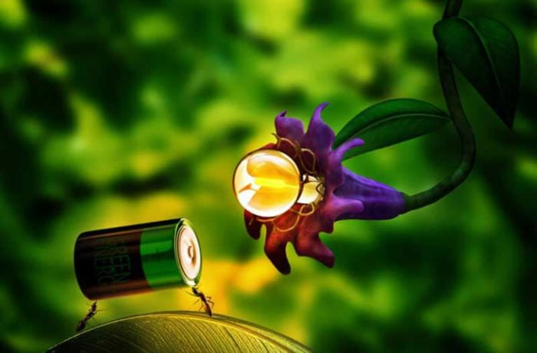 Glowing purple flower powered by a battery carried by ants