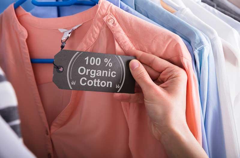 """Een hand houdt een label vast met '100% organic cotton' dat aan een roze shirt bevestigd is   A hand holding a """"100% organic cotton"""" certification label on a peach-coloured shirt"""