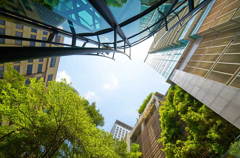 High-rise buildings and green trees against a blue sky, photographed from below