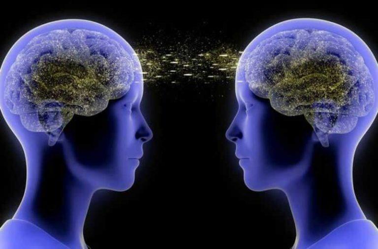 Twee blauwe doorschijnende digitale hoofden met hersenen die met elkaar verbonden zijn
