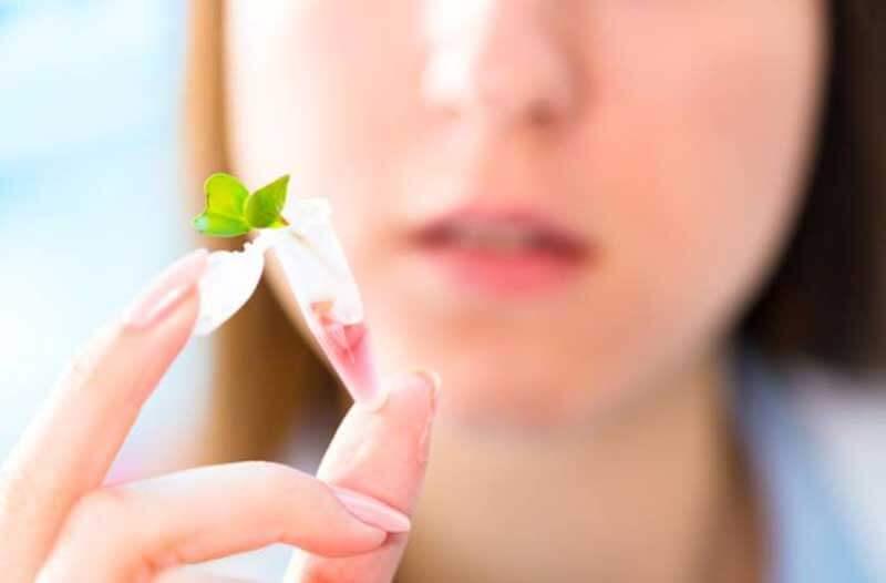 Close-up van een hand met een capsule met een kleine groene plant met op de achtergrond een wazig vrouwengezicht