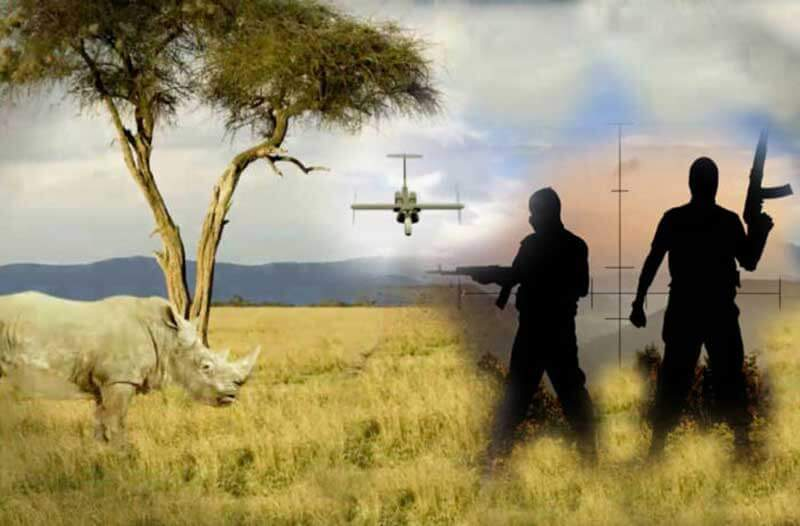 Afrikaans landschap met een neushoorn, twee stropers met geweren en in de verte een drone
