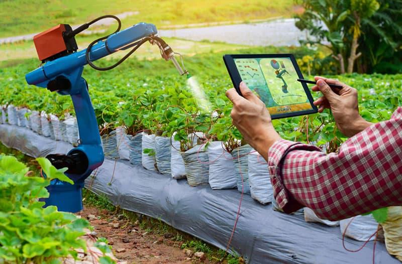 Twee handen houden een tablet vast en besturen een robotarm die planten besproeit