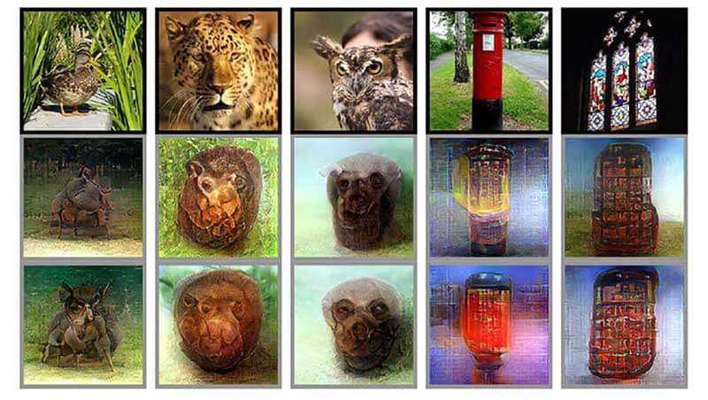 Images of animals and objects showing what the brain sees