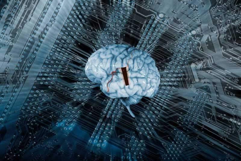 Digital representation of a human brain