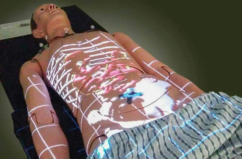 Medical mannequin in a lying position with scanned images of internal organs overlaid on top of it
