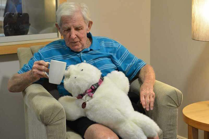 An elderly man sitting and playing with Paro, a therapeutic robot seal