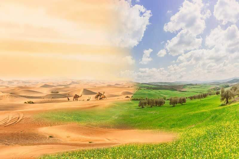 A landscape photo of a desert on the left and a grassy green field on the right